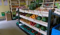 """""""Owoce - warzywa"""" po remodelingu"""